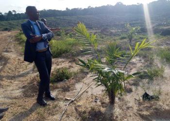 Mammoud Mourtada,Directeur Général de Camvert s.a.